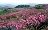 湖南娄底新化县登成生态观光农业产业园项目成功签约