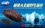 绿稀好食品:打造中国绿色有机食品第一品牌